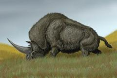 elasmotherium lived during the ice age