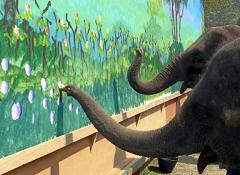 elephants are intelligent and can paint