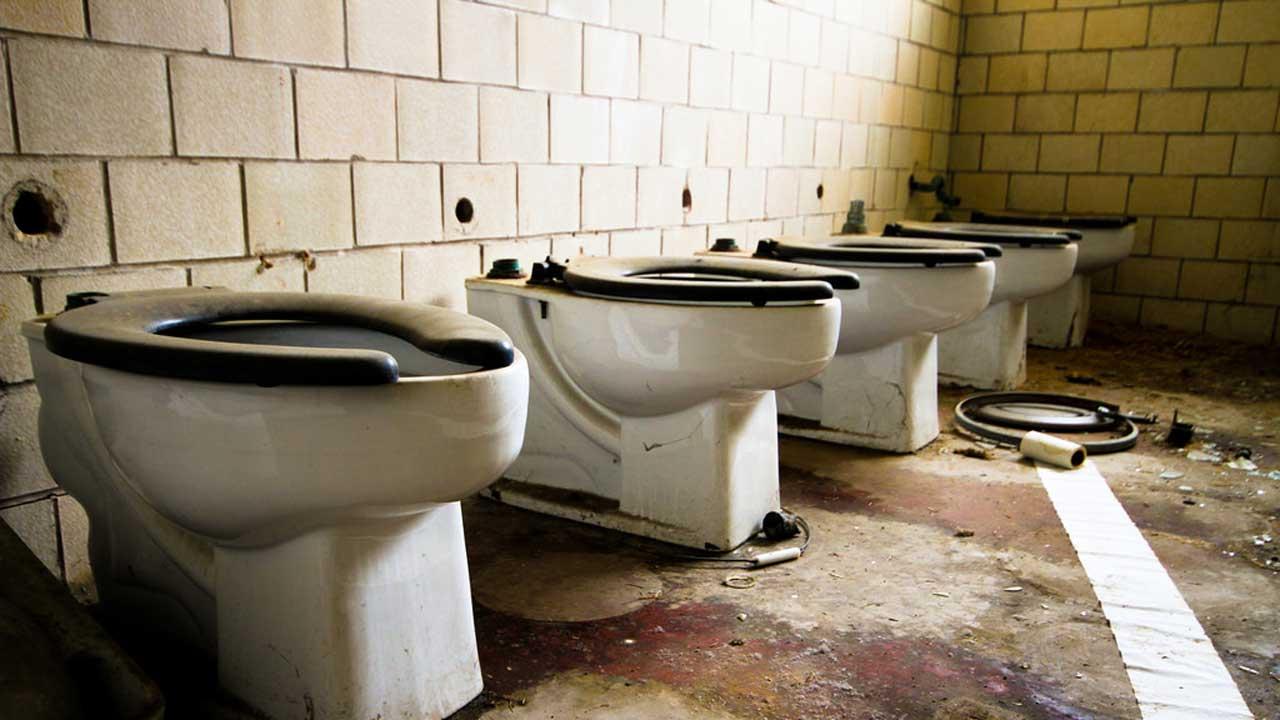 toilet throne