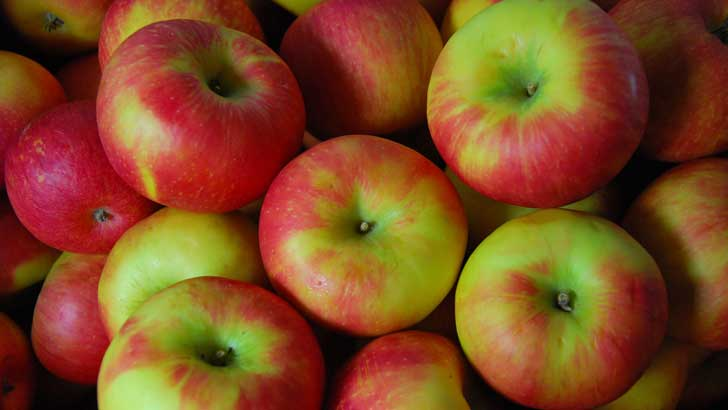 where did apples come from
