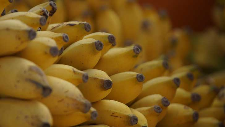 where did bananas come from