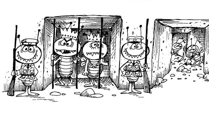 termites keep prisoners