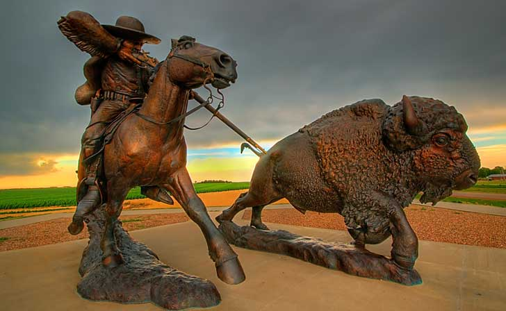 what happened to the buffalo of the great plains