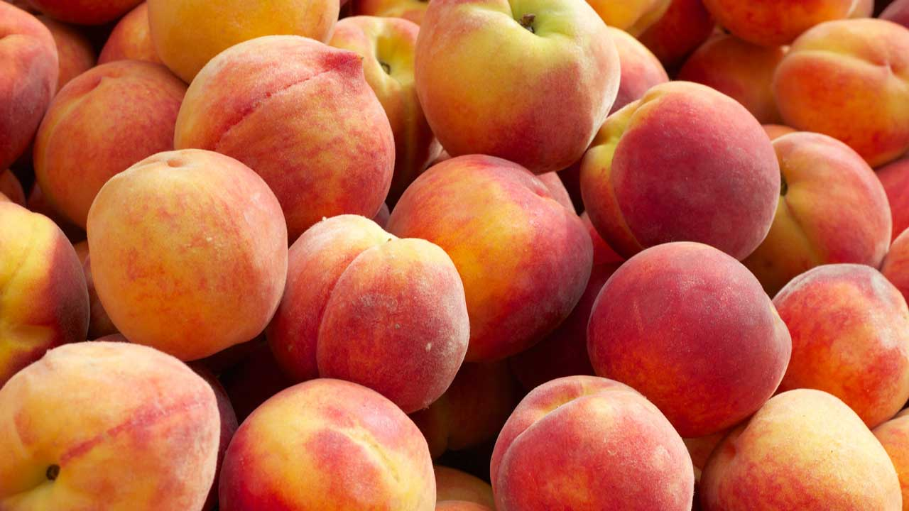a bunch of yummy peaches