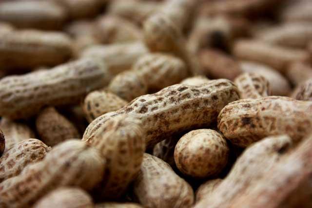 peanut word